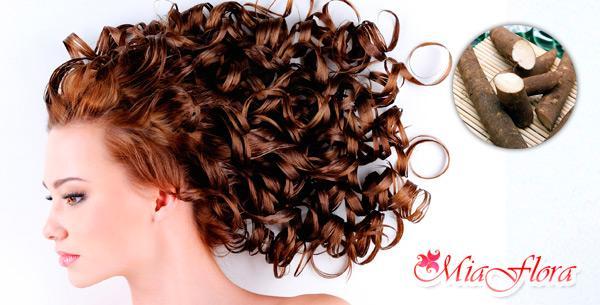 Как приготовить корень лопуха для волос