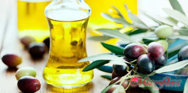 простая маска для волос яйцо и оливковое масло