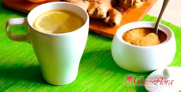 рецепт имбирного напитка для похудения